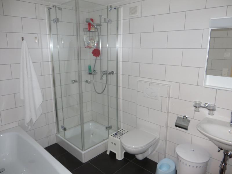 Beneden badkamer met aparte douche