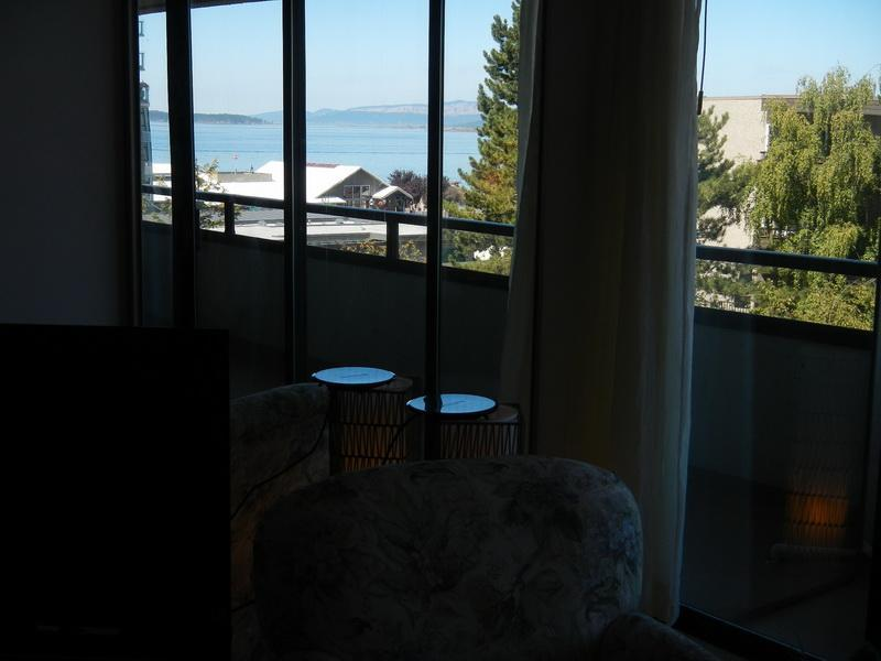 Seascape View from Living Room and Bedroom
