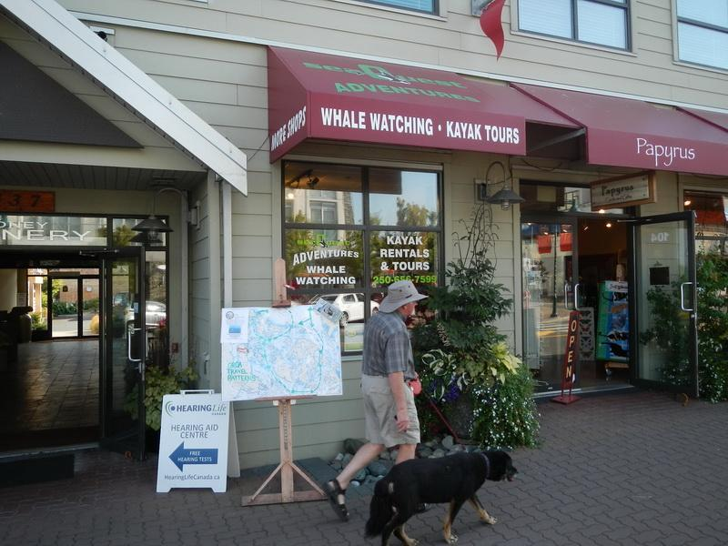 Whale watching, Doctors offices, Boutique Stores, Grocery Store, Wine Store etc across the street.