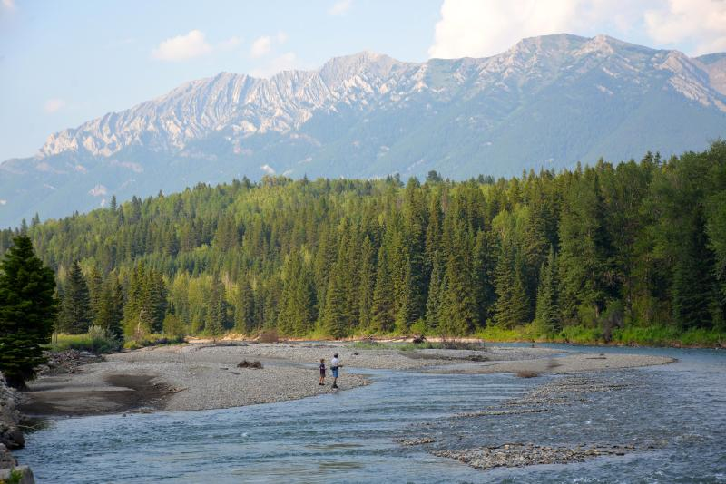 World Class Dry Fly Fishing all to yourself from our property!