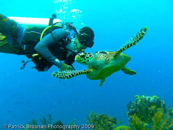 Scuba Diving With native Hawksbill turtle