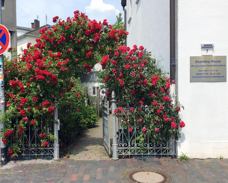 Boardinghouse Oldenburg, alquiler vacacional en Bad Zwischenahn