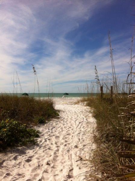 Sugary-soft, white sand beach path