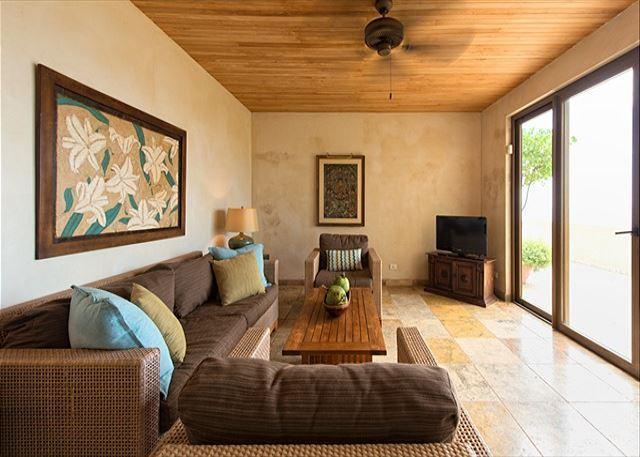 Apt. Living room