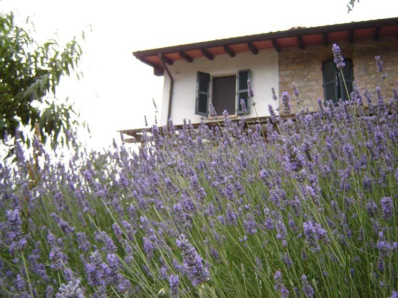 Casa dell'Abbondanza, vacation rental in Gropparello