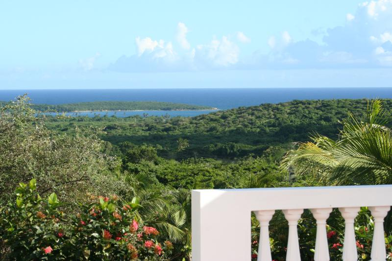Sun Bay and Carribean Views from Pool