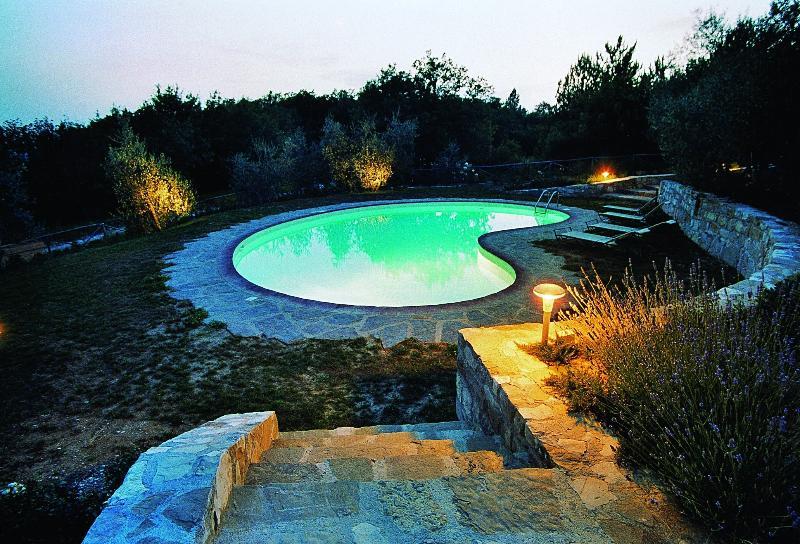 The garden - the bean pool