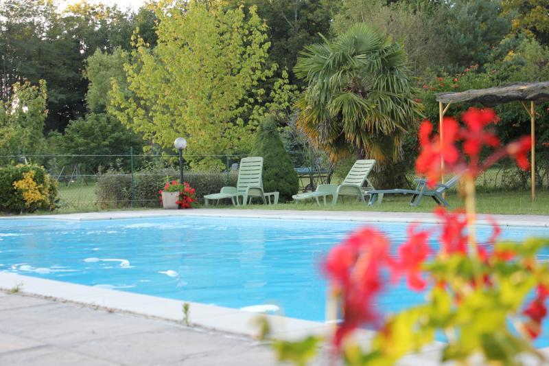 Gites, Piscine, Wifi, entre Sarlat et Rocamadour, holiday rental in Reilhaguet