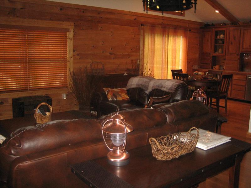 Living Room/Dining Room 1
