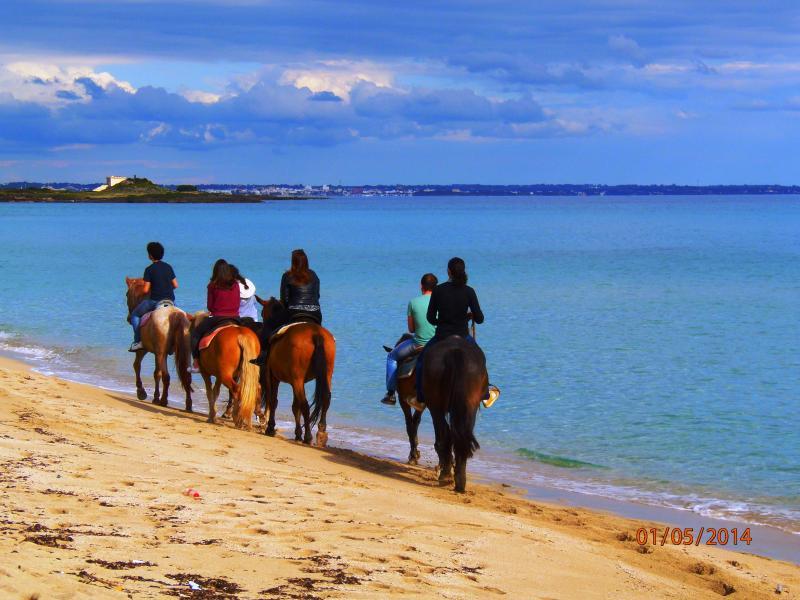 passegiata a cavallo nelle vicinanze