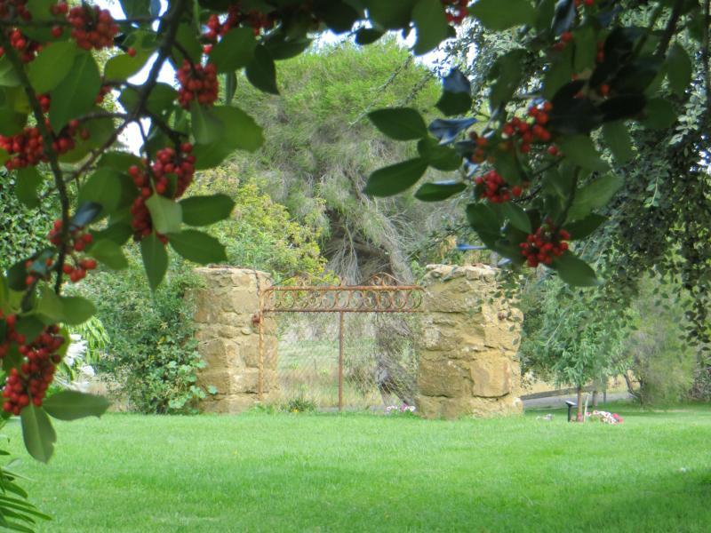 Around the cottage garden