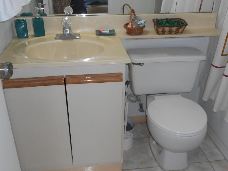 Bathroom with hot/ cold water shower