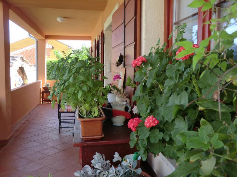 Open terrace house