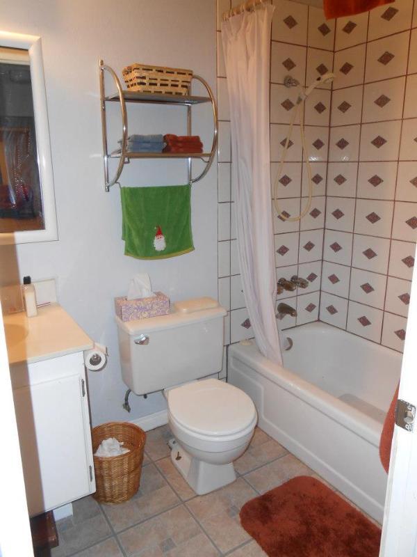 Hallway bathroom tub and shower