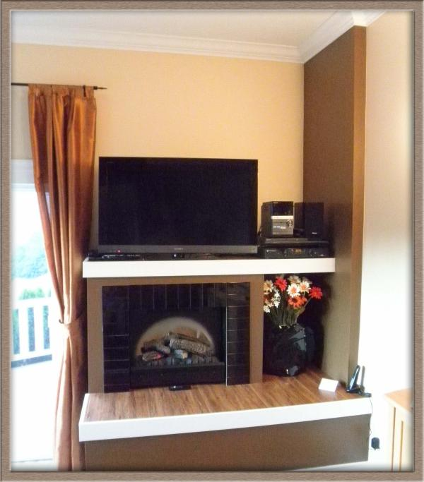 Fireplace and TV / Stereo