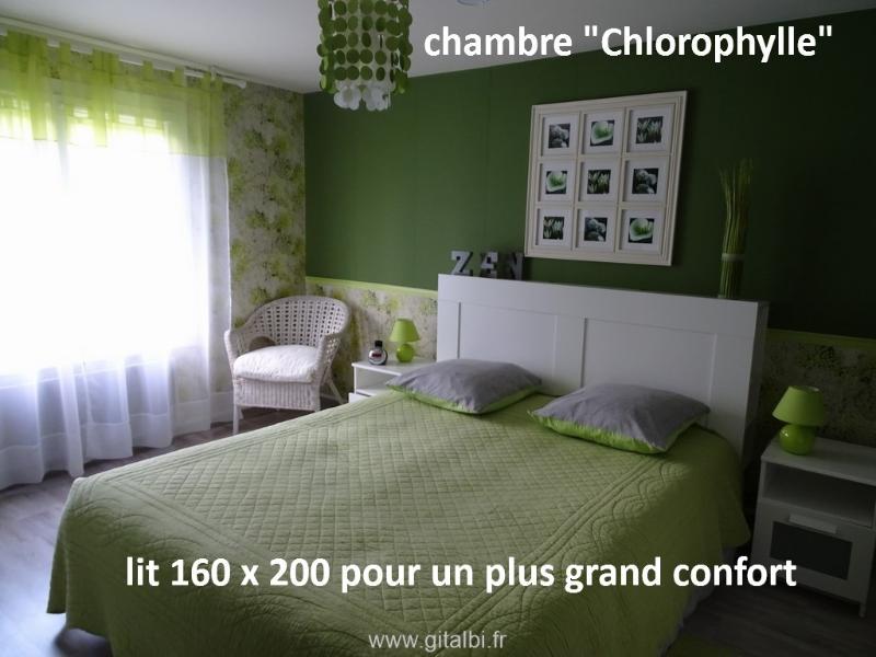 CHAMBRES D'HOTES DES TAILLADES, holiday rental in Rivieres