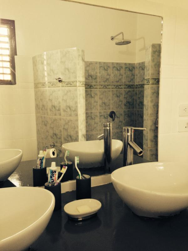 2nd bathroom : Large shower & Toilets