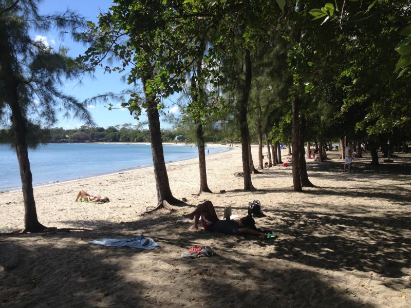 Im Schatten der Kasuarinen am Strand von Tamarin, 400 Meter von uns