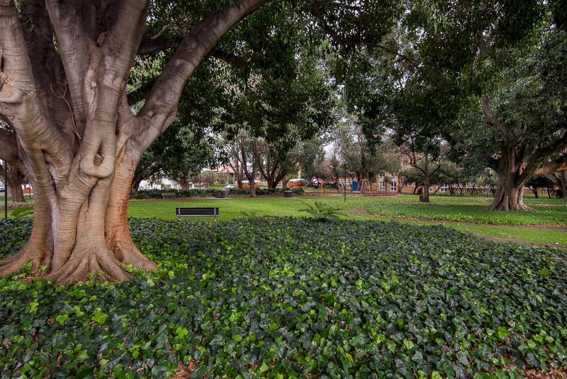 Inside the adjecent park