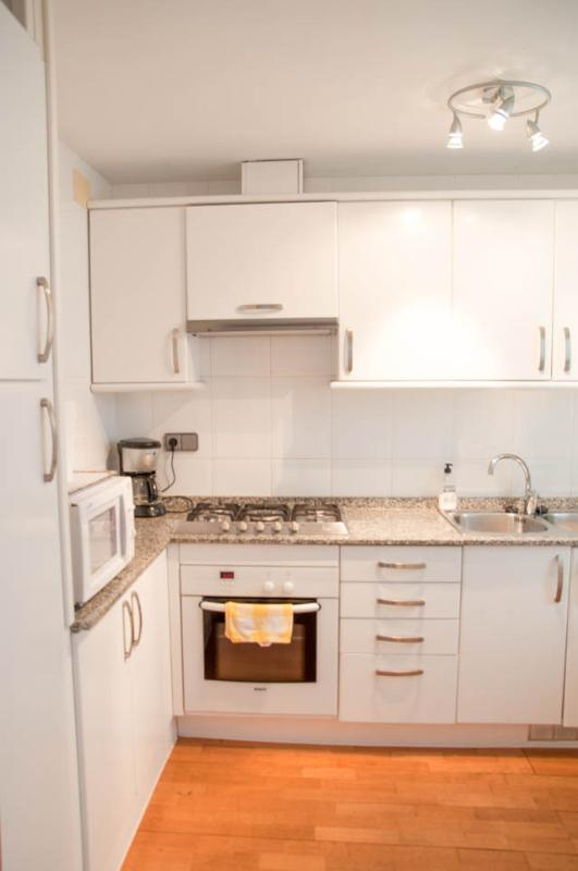 Large well equipped kitchen with fridge freezer, dishwasher, hob and oven
