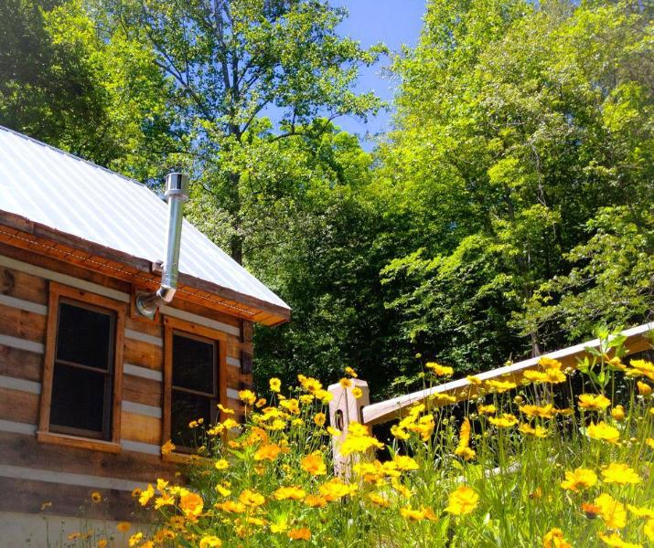 Deer Run:  Waterfront Log Cabin, holiday rental in Dobson