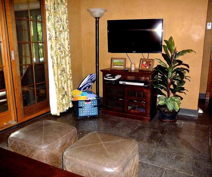 Flat screen TV/Cable/Internet