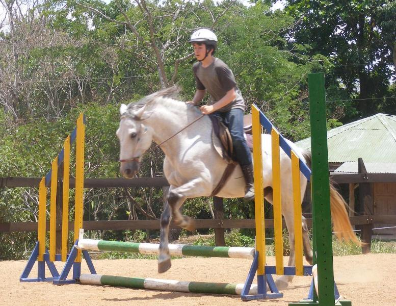 Horseback riding lessions
