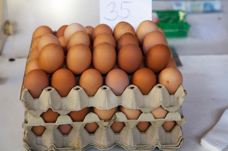 frehs eggs