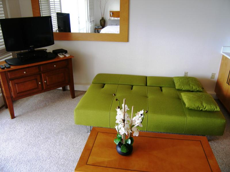 Queen sofa sleeper is great for 2 extra guests. As comfortable as any bed
