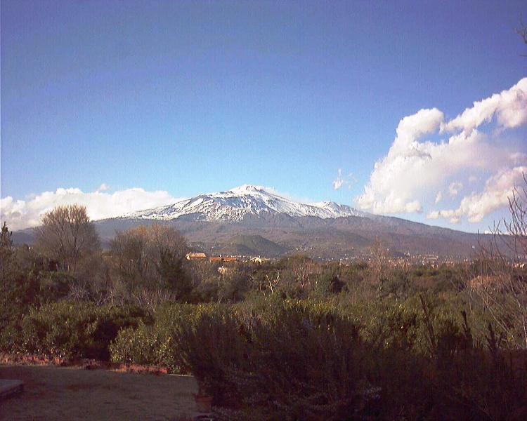 IL Mandarino, vacation rental in San Giovanni la Punta