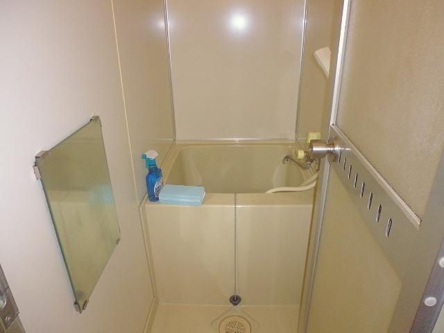 Separate bathroom with japanese style bath tub