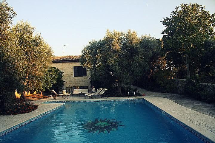 In the pool among olive trees!