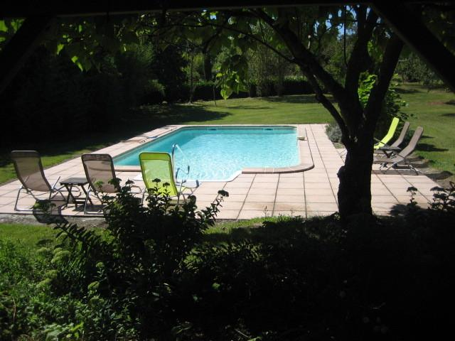 Swimming pool as viewed from the patio