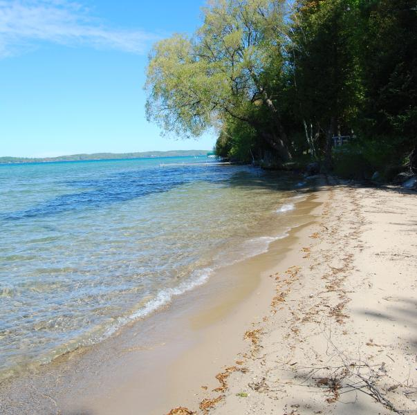 Torch Lake Exceptional Lakefront Cottage, holiday rental in Alden