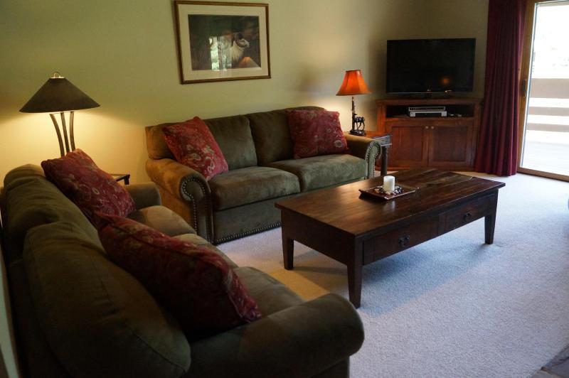 Cómodos sofás, TV de pantalla plana y vistas a la montaña, un acogedor fuego... cielo!