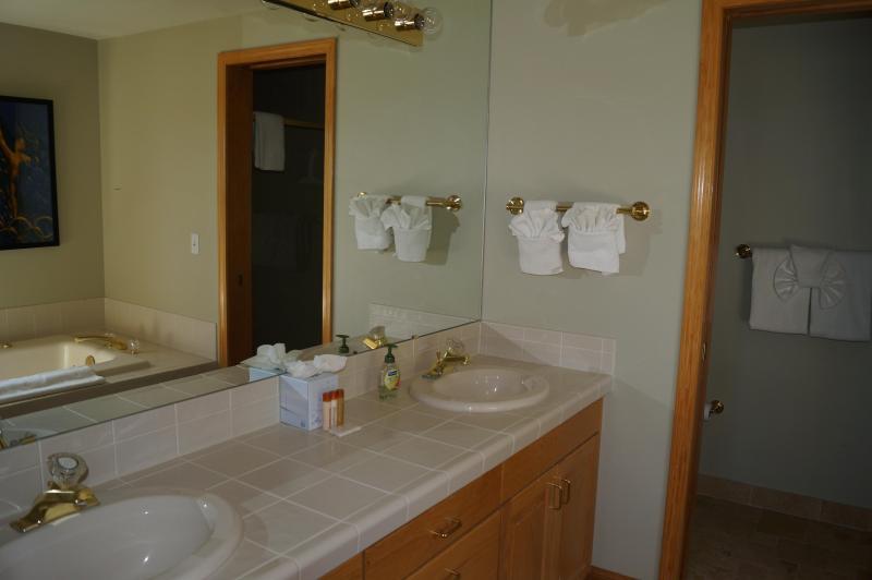 Baño principal con doble lavabo, bañera de hidromasaje, ducha grande.