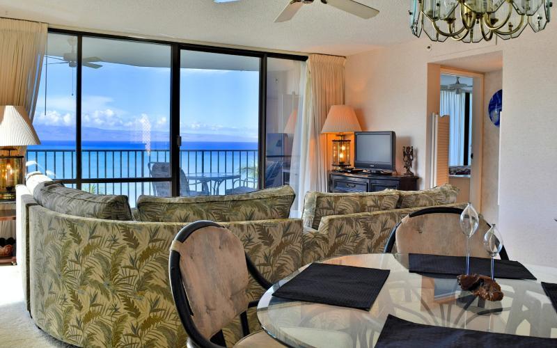 Increíble sala de estar / comedor