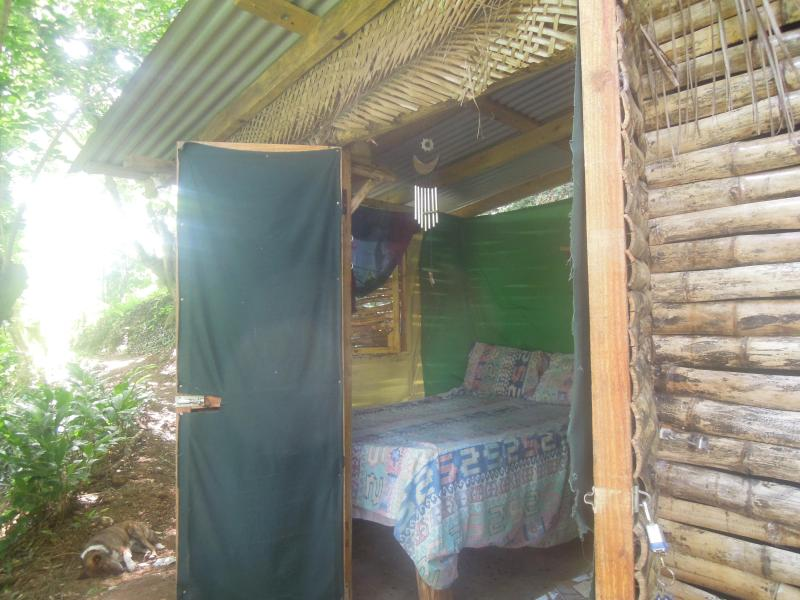 Welcome to the hippy Irie  lodge, nestled in the trees, take in views of the mountain from your bed.