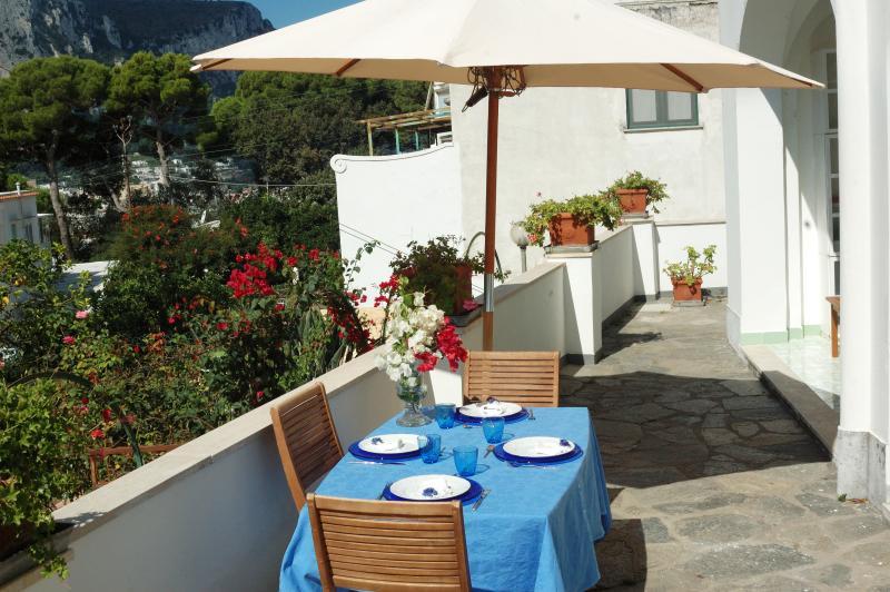 Pranzo in terrazza...(dettaglio terrazza)