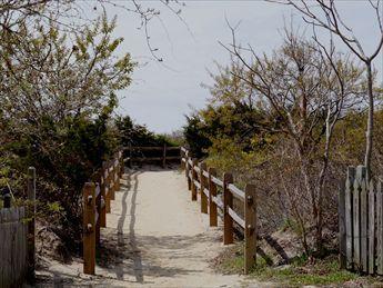 Camino de la playa cruzando la calle