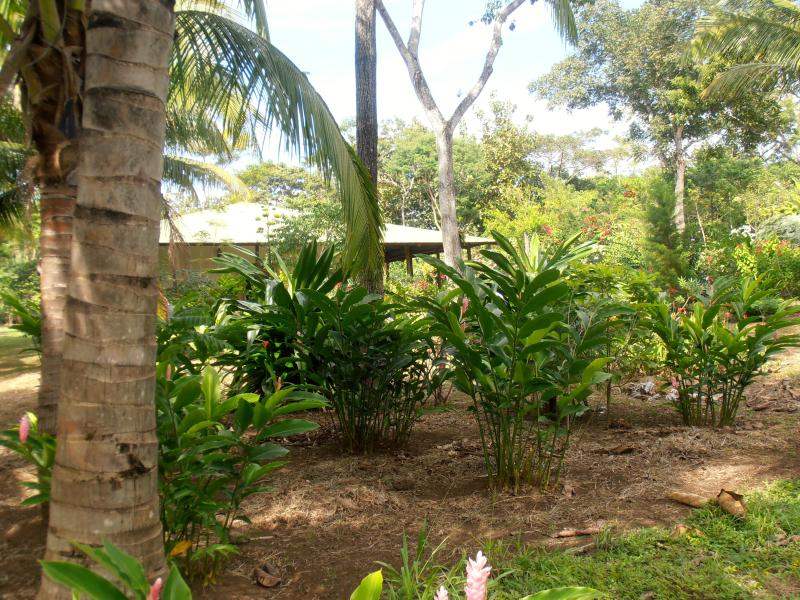 Tropical Oasis for Large Group Gatherings, holiday rental in Mombacho Volcano