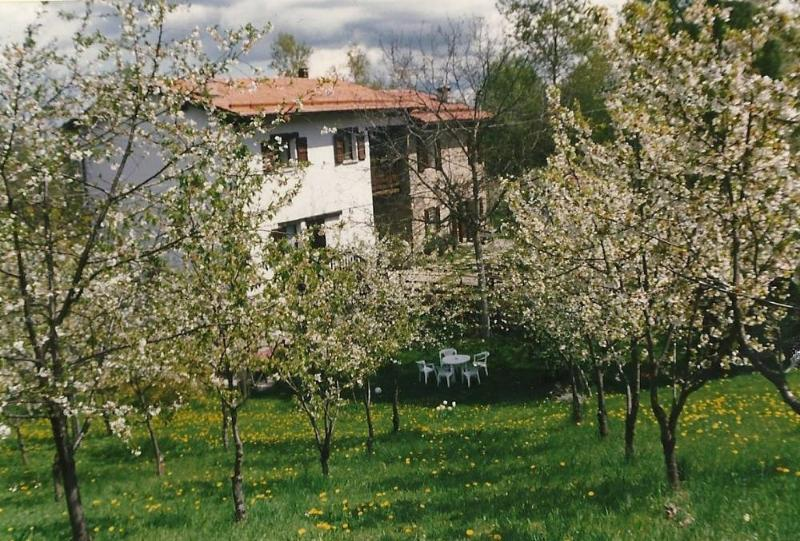 Casa tipica in montagna, vacation rental in Serramazzoni