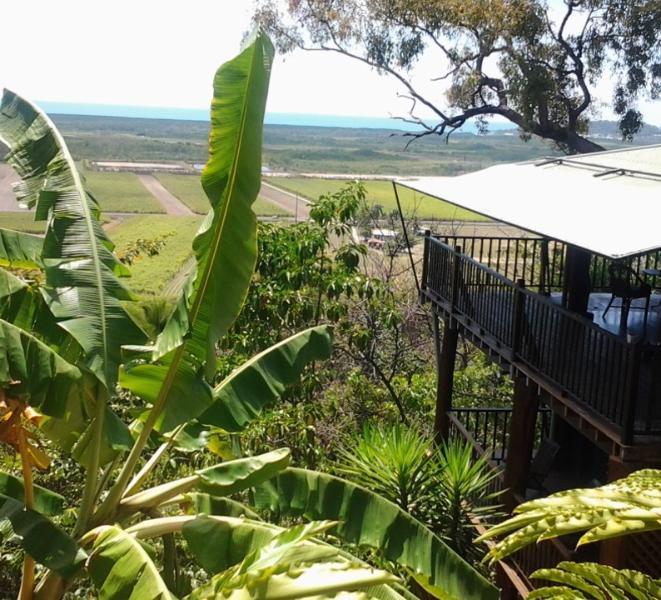 Port Douglas Car Rental: Waitemata (Sparkling Waters)