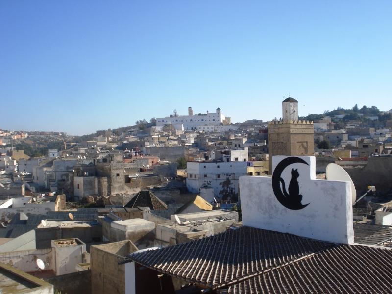 Terrace view: the old city (medina)