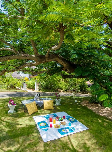 A nanny's room is included in Knockando's staff quarters, and a special 'dining garden' is available on request for children's cuisine.  Reservations required.