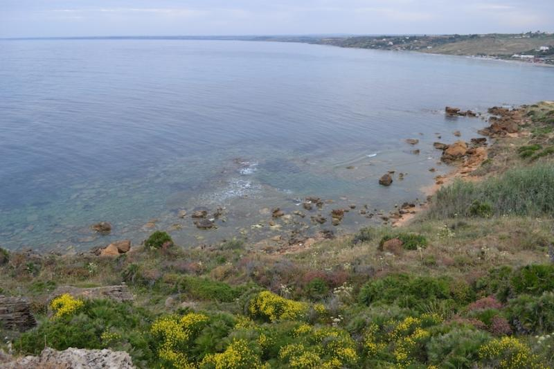 Coves near the residence