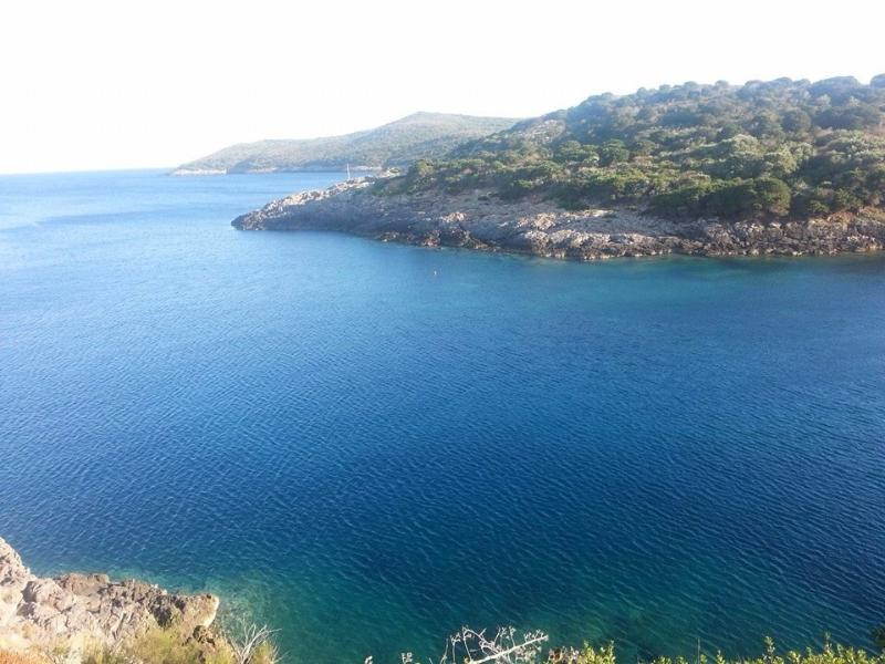Monolocale, holiday rental in Giannutri Island
