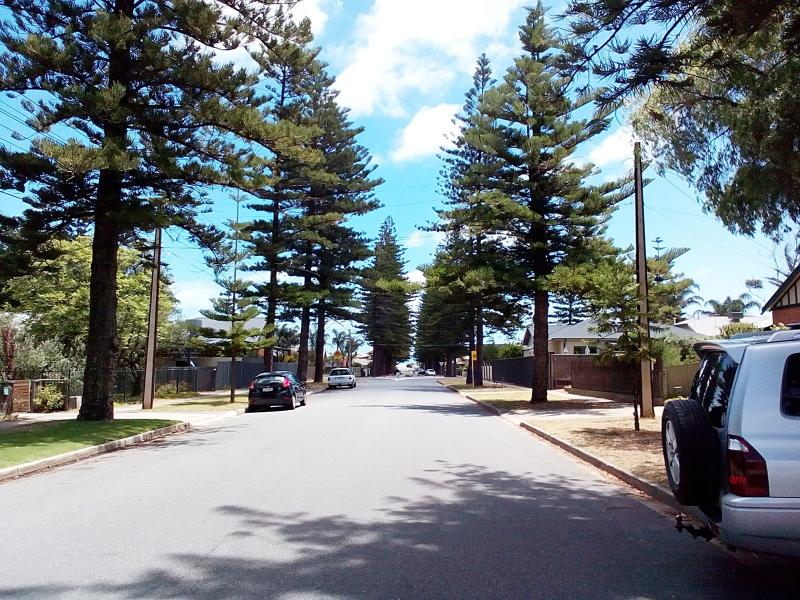 300m to the beach along a beautiful tree lined street