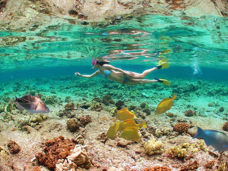 Foto van onze vriend Ms. Anderson snorkelen bij Kahaluu.