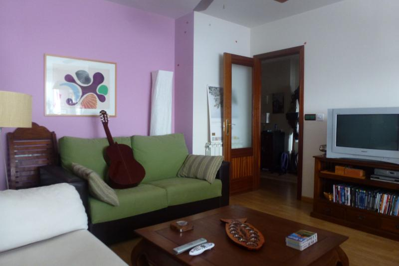 Apartamento, holiday rental in Penalba de Santiago